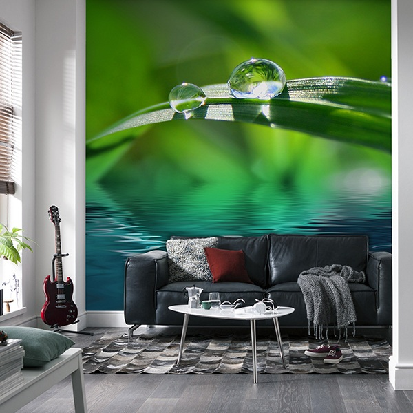 Wall Murals: Dew drops