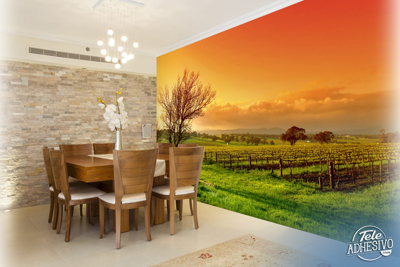 Wall Murals Sunset At The Vineyard
