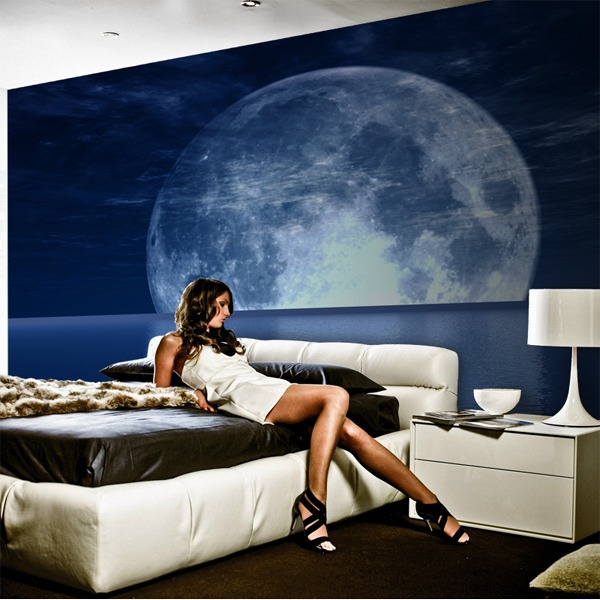 Wall Murals: Moon and Sea 0