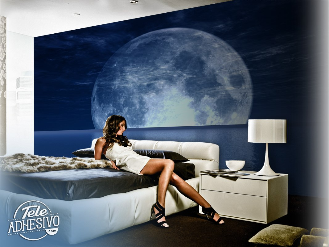 Wall Murals: Moon and Sea
