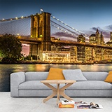Wall Murals: Illuminated night in Brooklyn 2
