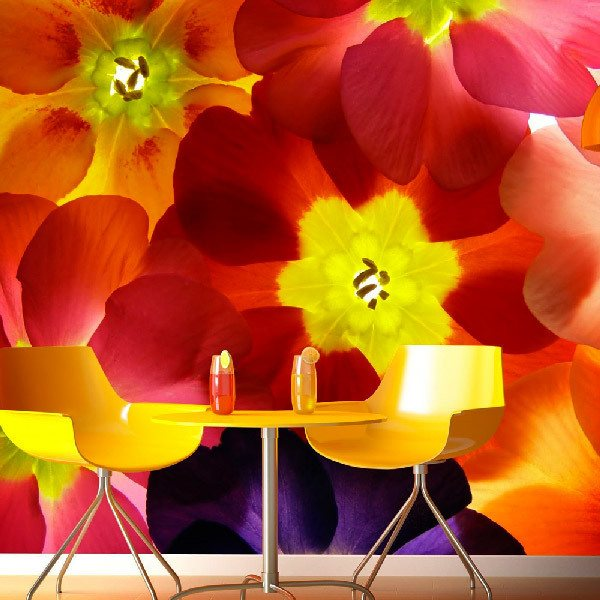 Wall Murals: Colorful Flowers 0