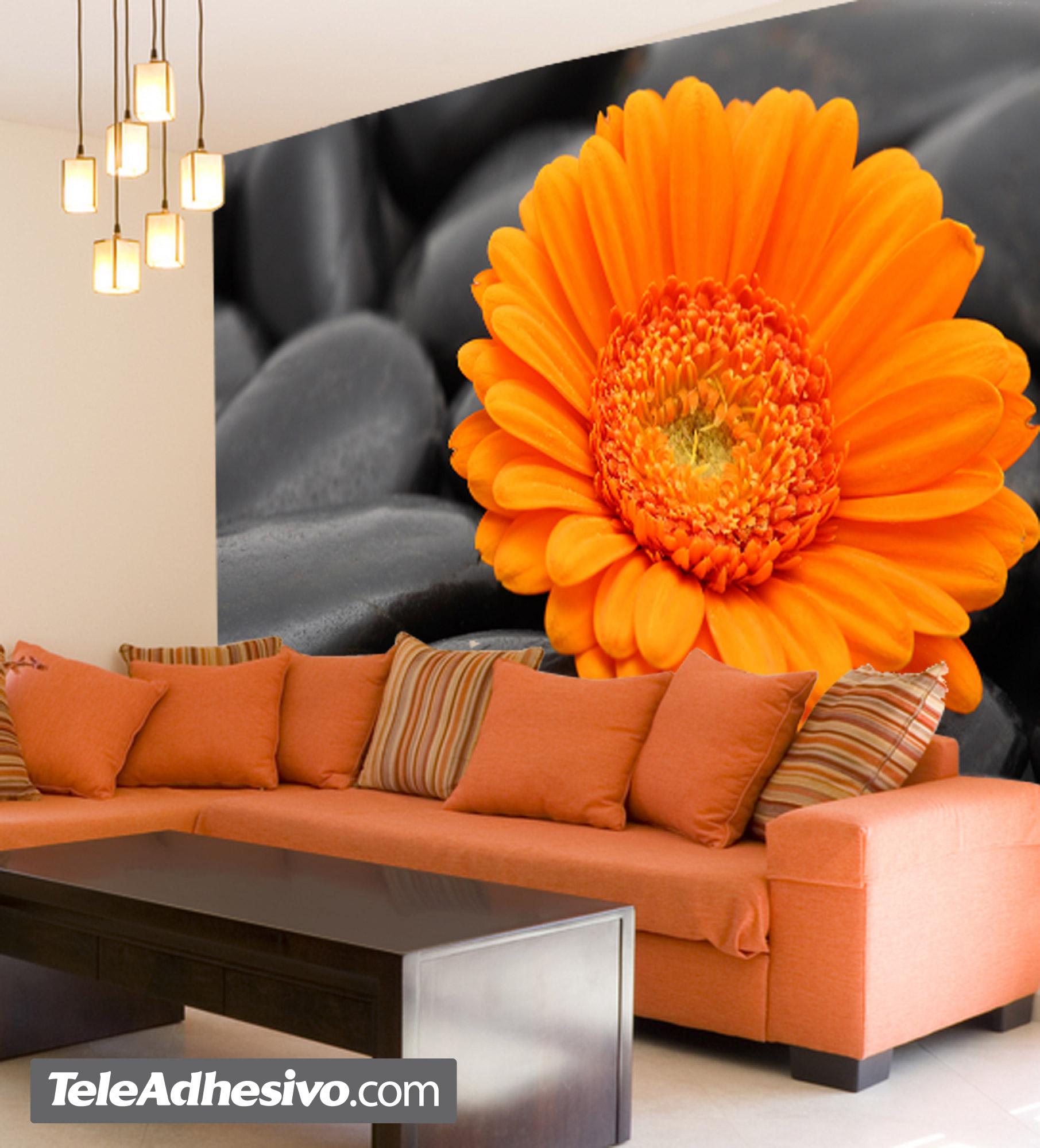 Wall Murals: Orange Gerbera