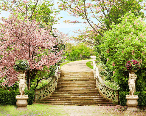 Wall Murals: Stairs in the Great Garden