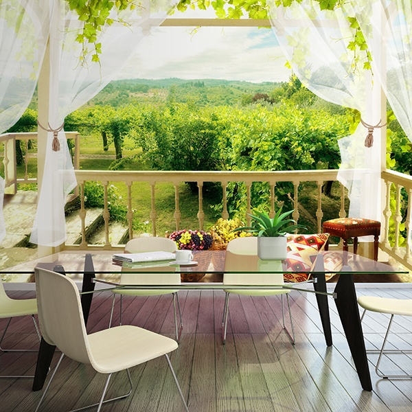 Wall Murals: Terrace in country house