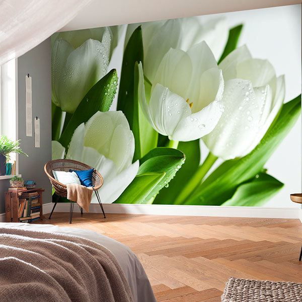 Wall Murals: White tulips