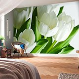 Wall Murals: White tulips 2