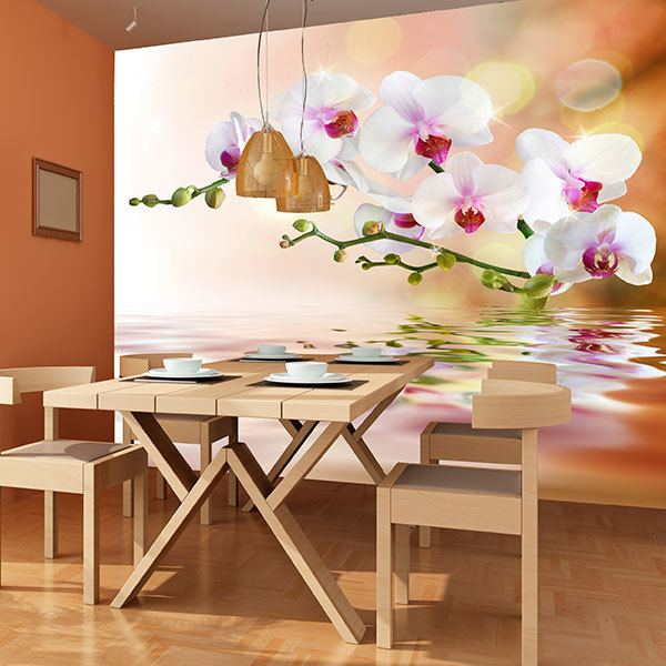 Wall Murals: Orchids