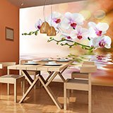 Wall Murals: Orchids 2