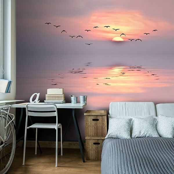 Wall Murals: Sunset among seagulls 0