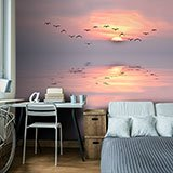Wall Murals: Sunset among seagulls 2