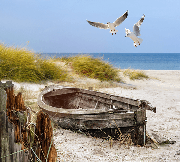 Wall Murals: Ancient boat on the sand