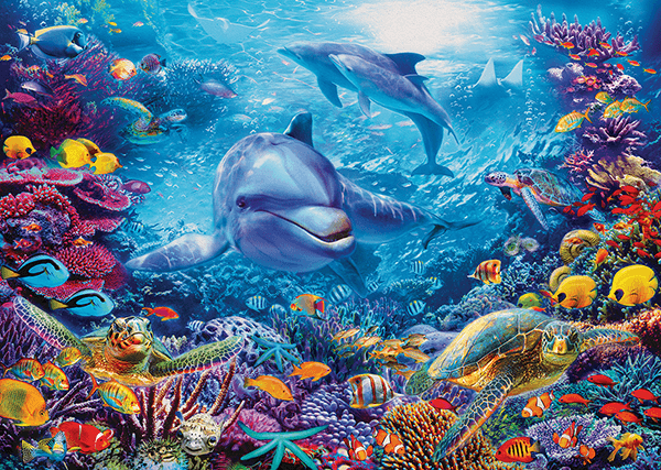 Wall Murals: Dolphins under the sea