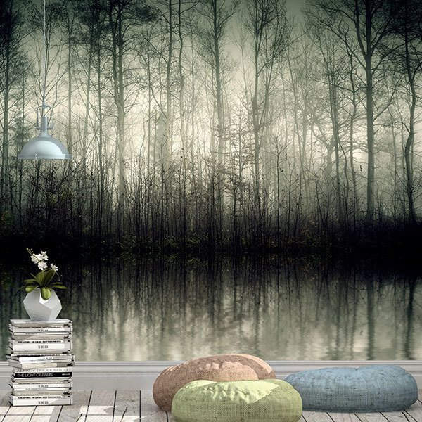 Wall Murals: Swamp in the dark forest 0