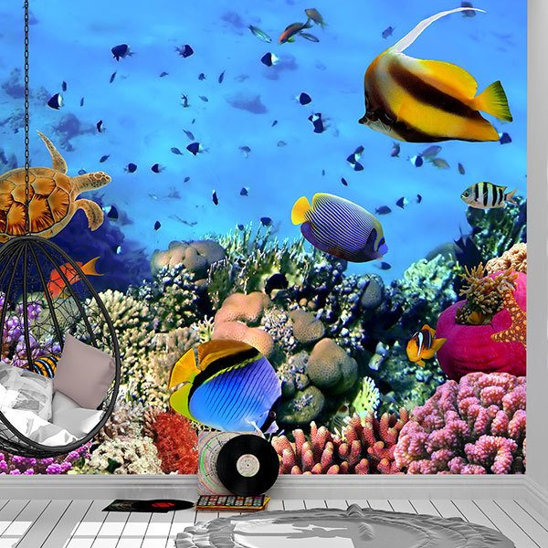 Wall Murals: Colors under the sea