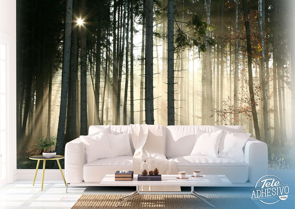 Wall Murals: Glow in the woods
