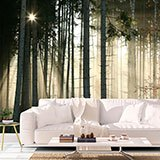 Wall Murals: Glow in the woods 2