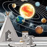 Wall Murals: Orbit of the Solar System 2
