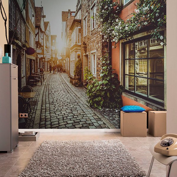 Wall Murals: Streets of Bremen