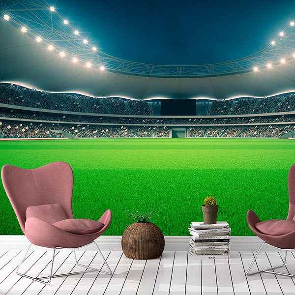 Wall Murals: Football Stadium