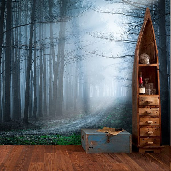 Wall Murals: The black forest