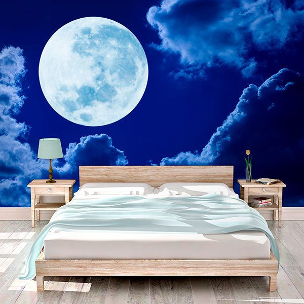 Wall Murals: Full moon in blue night