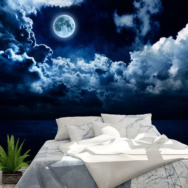 Wall Murals: Full moon over the ocean