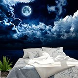 Wall Murals: Full moon over the ocean 2