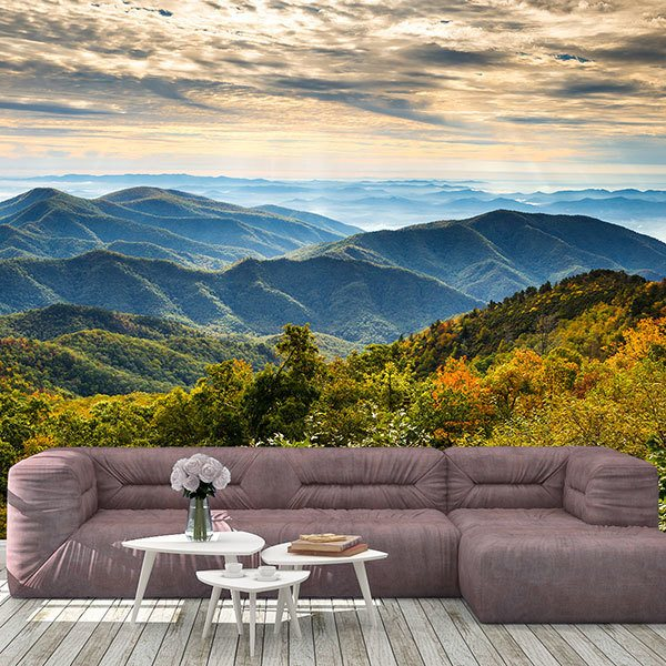 Wall Murals: Appalachian Mountains, USA