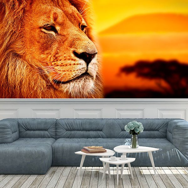 Wall Murals: Panoramic African Lion