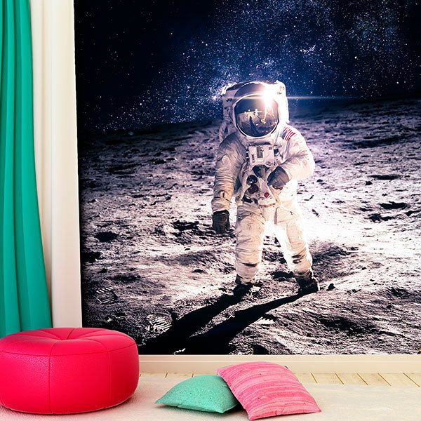 Wall Murals: Armstrong on the Moon