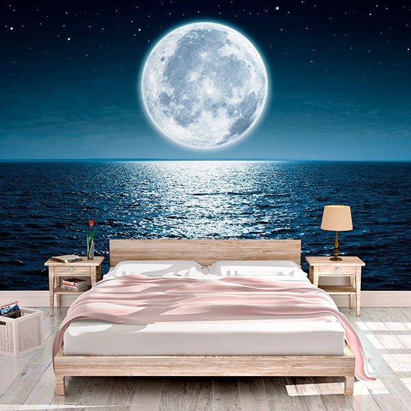 Wall Murals: Full Moon Night 0