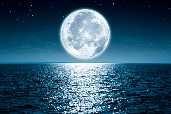Wall Murals: Full Moon Night