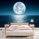 Wall Murals: Full Moon Night 2