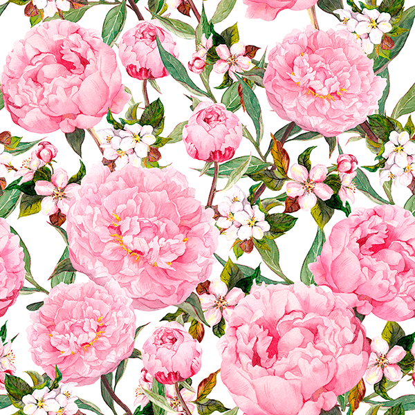 Wall Murals: Watercolour peonies