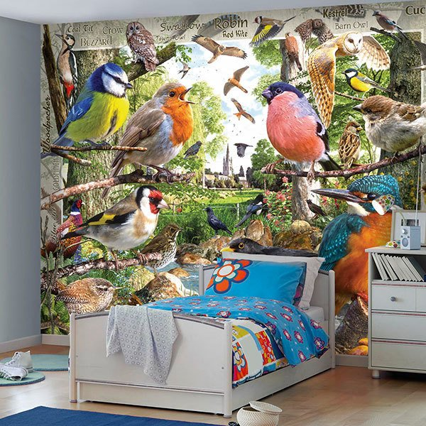 Wall Murals: Bird Catalogue 0