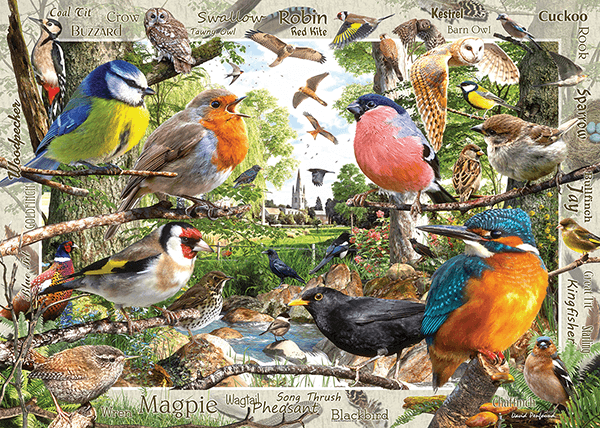 Wall Murals: Bird Catalogue