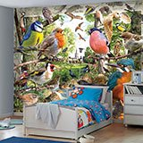 Wall Murals: Bird Catalogue 2