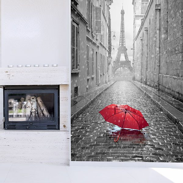 Wall Murals: Rain in Paris 0