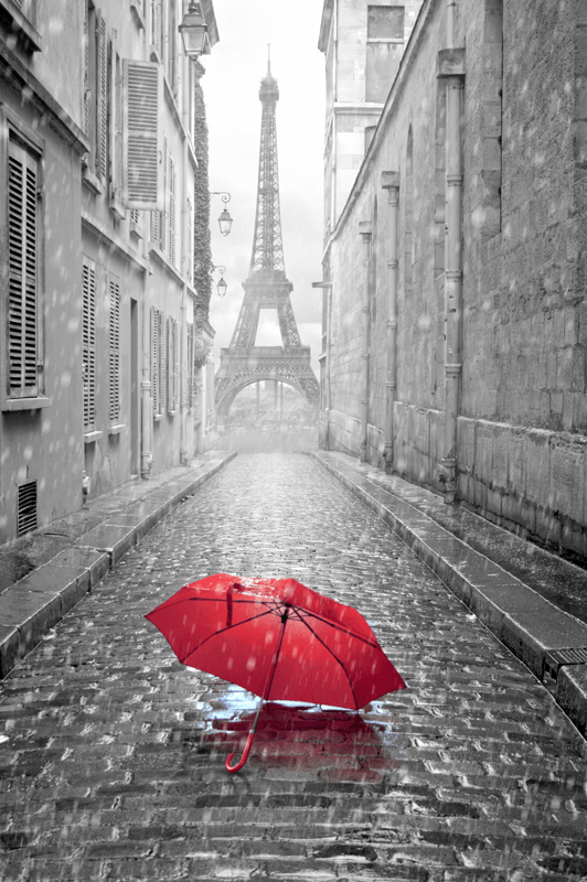 Wall Murals: Rain in Paris
