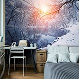 Wall Murals: Dawn in winter 2