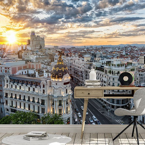 Wall Murals: The Great Way of Madrid