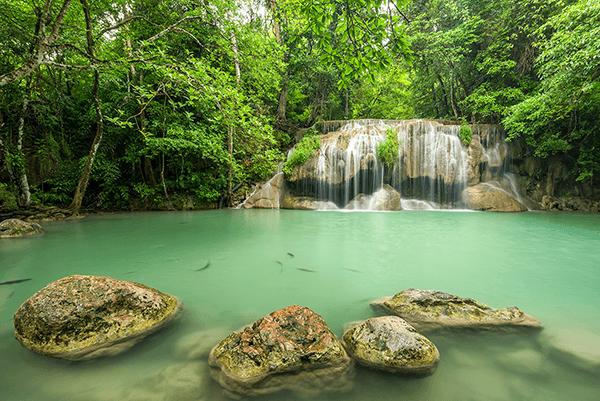 Wall Murals: Erawan Park Waterfall