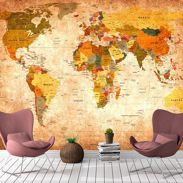 Wall Murals: Didactic world map 0