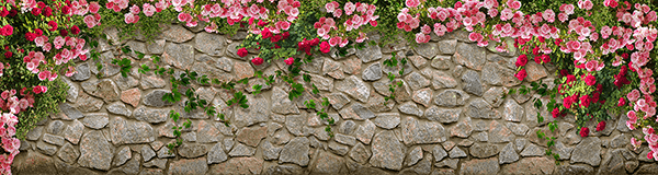 Wall Murals: Wall of Roses
