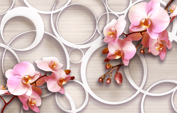 Wall Murals: Rose Orchids