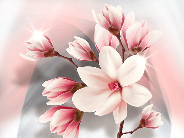 Wall Murals: Brilliant Magnolias