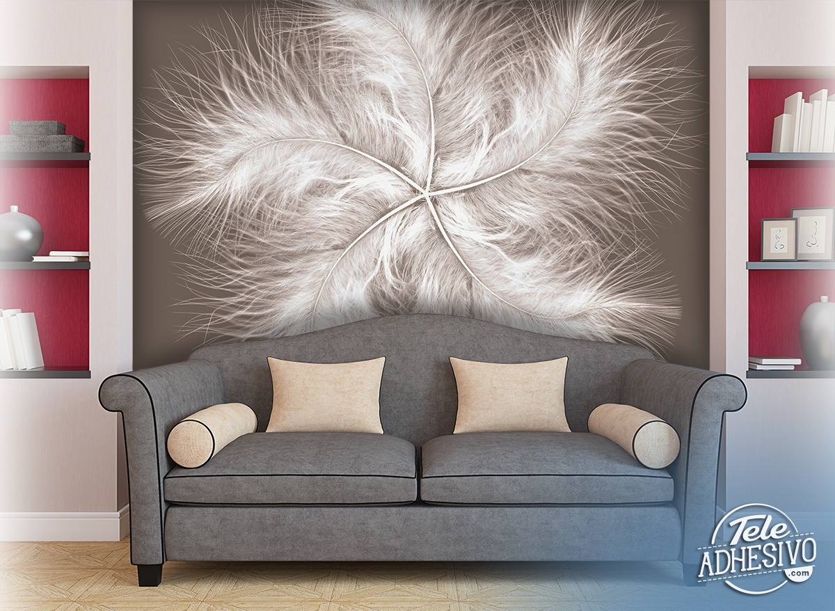 Wall Murals: Feather Spiral