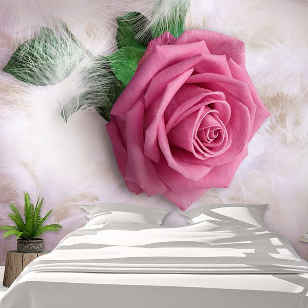 Wall Murals: Pink between feathers