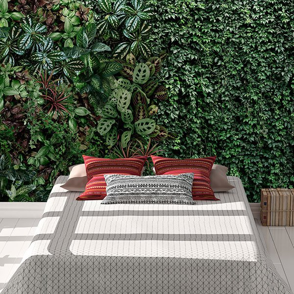Wall Murals: Vegetation wall